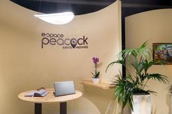Espace Peacock 8.jpg