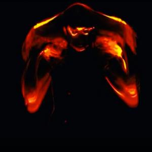 Setorii The Phoenix