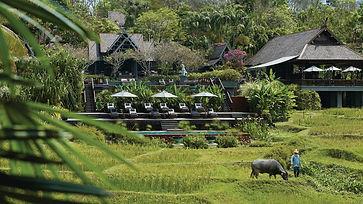 The Four Seasons Chiang Mai