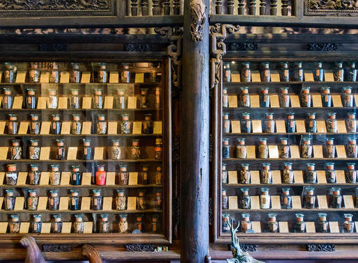 Museum of Traditional Vietnamese Medicine