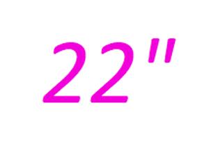 22 inch