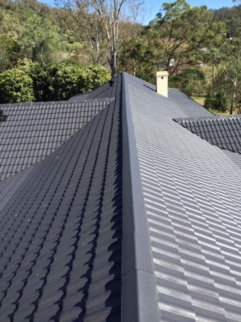 Roof Painting.jpg