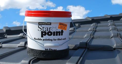 Starpoint Pointing.jpg