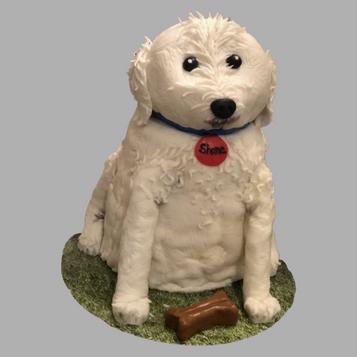 Shane the Doodle Dog Cake