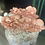 Thumbnail: Pink Oysters