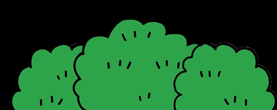 web_bush3.png