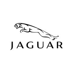 NEW JAGUAR-01.png