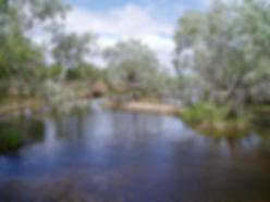 Lakefield River, Cape York, QLD