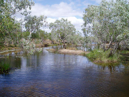 Lakefield River, Cape York, QLD