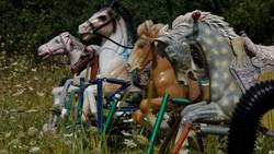 Toy Horse Graveyard