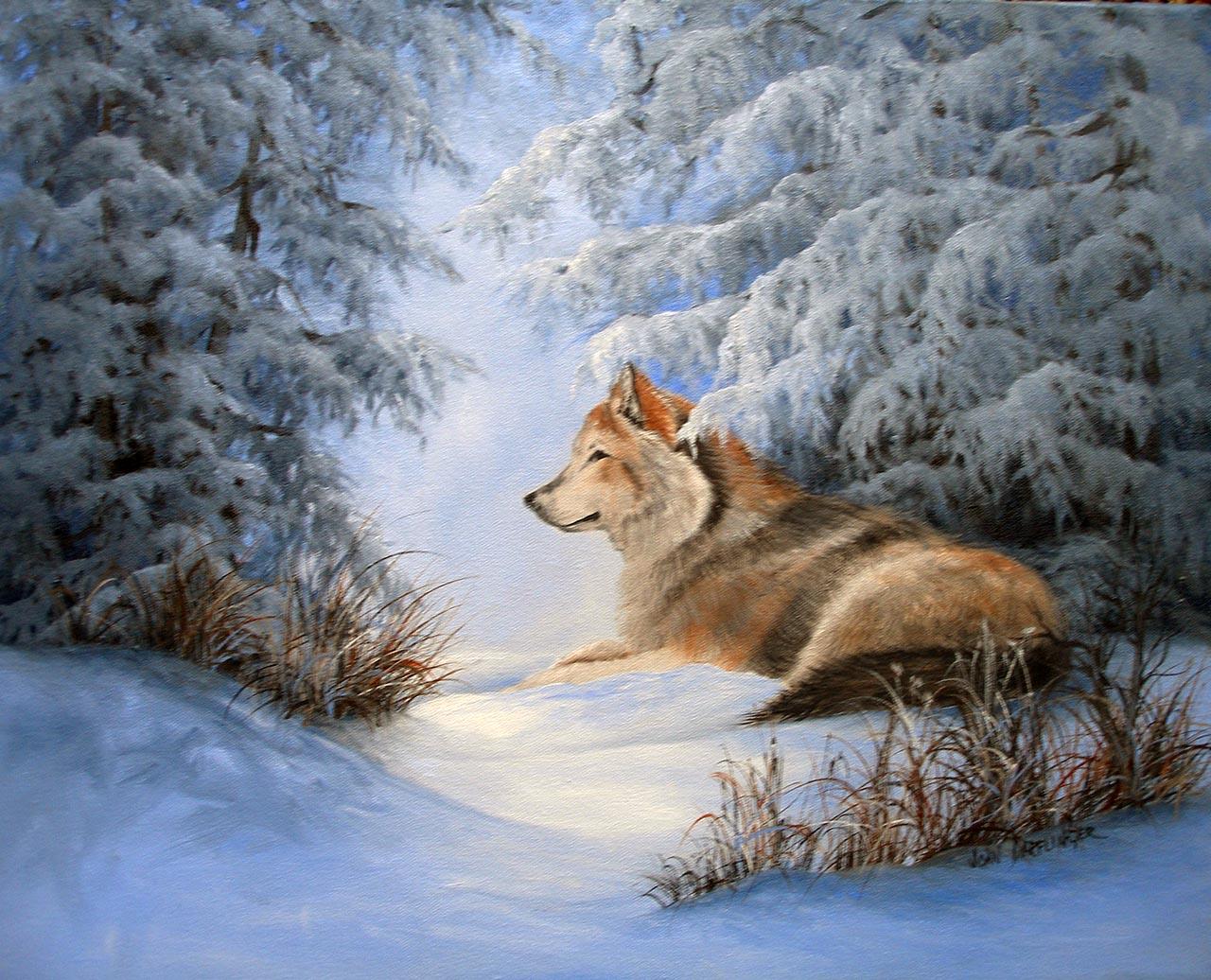 """""""Wolf Under Pine"""""""
