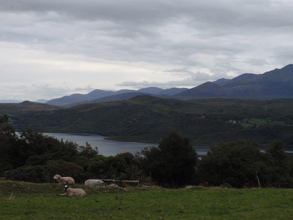2013-ireland-P1010001