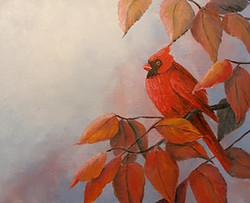 """""""Red Cardinal"""""""