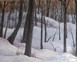 """Winter in the Rockies"""