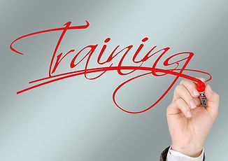 training 1.jpg