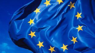 Texto de la carta enviada a los Eurdiputados alemanes