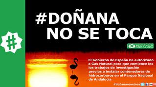 La UE investigará la extracción de gas en Doñana tras la denuncia de Primavera Andaluza