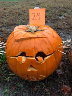Pumpkin 29