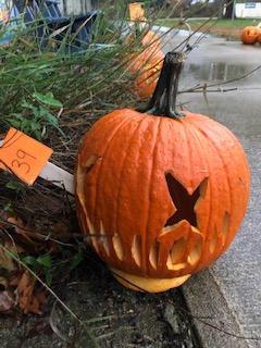 Pumpkin 39