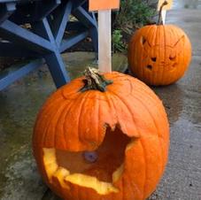 Pumpkin 35