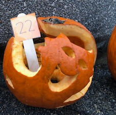 Pumpkin 22