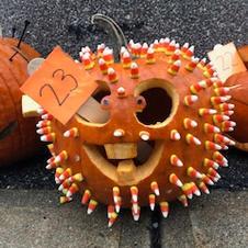 Pumpkin 23