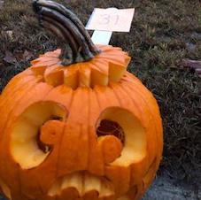 Pumpkin 31