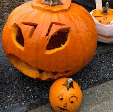 Pumpkin 26