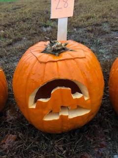 Pumpkin 28