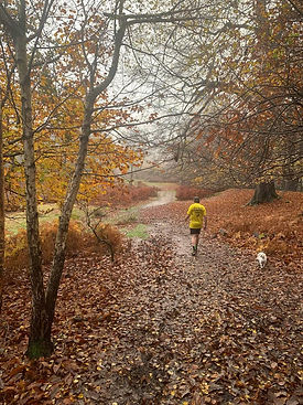 Mark-Beardon-Autum-run.jpg