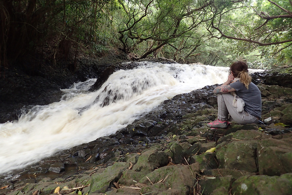 Twins falls Waterfall Maui, After Haleakala