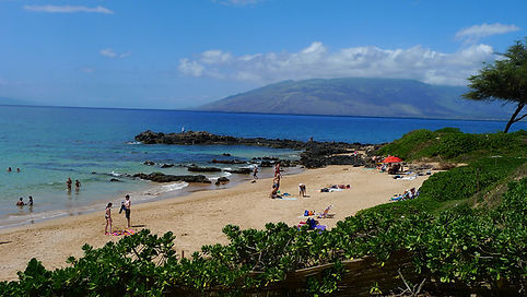 Maui Kamaole| Kamaole Sands| Kamaole Sands| Kamaole Snorkel| Kihei Snorkel Tour| Kihei Snorkel