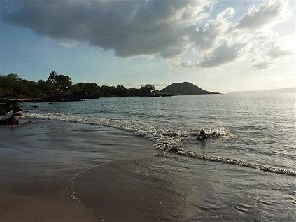 Makena Landing| Makena Landing Maui| Makena Landing Snorkel| Shoreline Snorkel| Maui Snorkel Tours