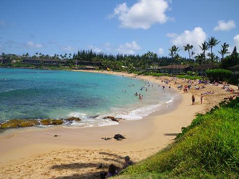 Napili Bay Snorkel | Napili Bay Maui| Napili Bay Resort| Napili Beach