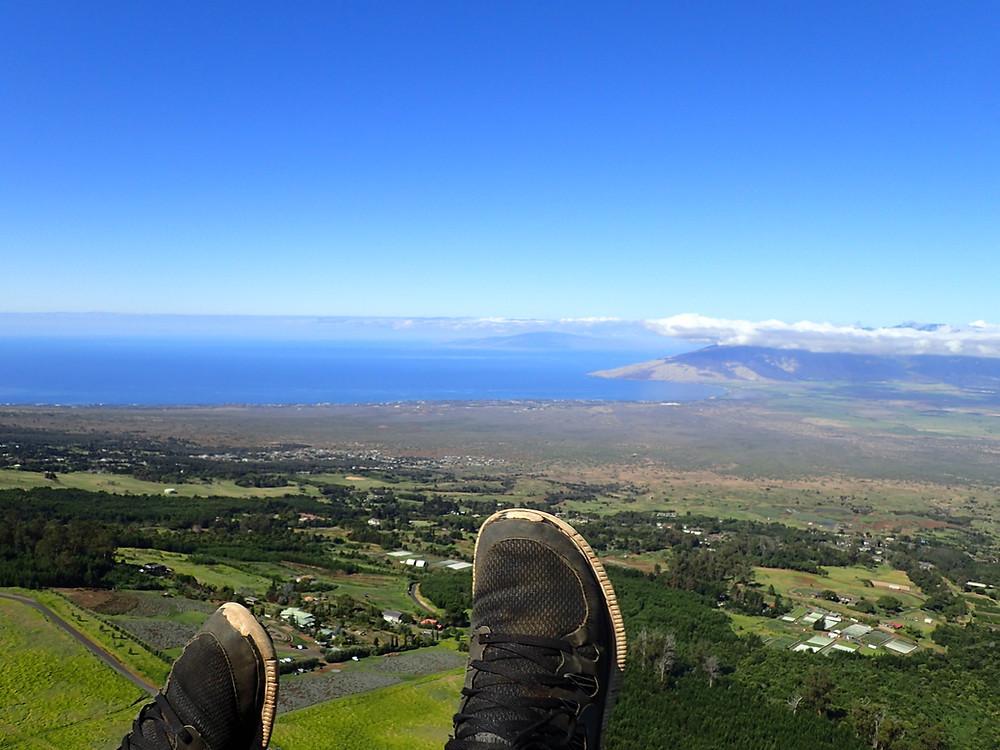 Central Maui and Lavender farm view