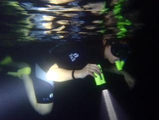 Night Snorkeling In Maui!