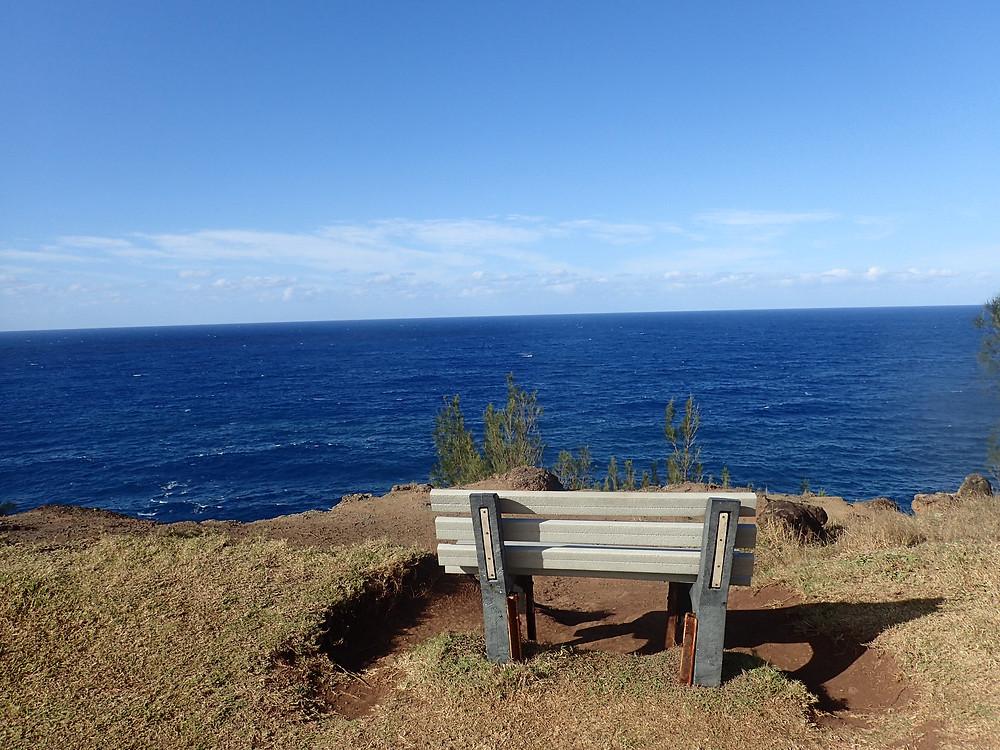Hiking upperwest maui  Ohai Trail bench