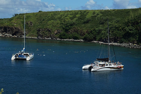 Honolua Bay Snorkeling | Honolua bay maui