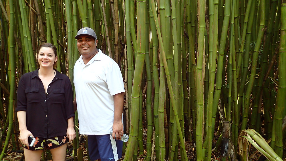 Best Stops on Road to Hana, Bamboo Forest Hiking Haiku!