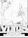 vinus logo png.png