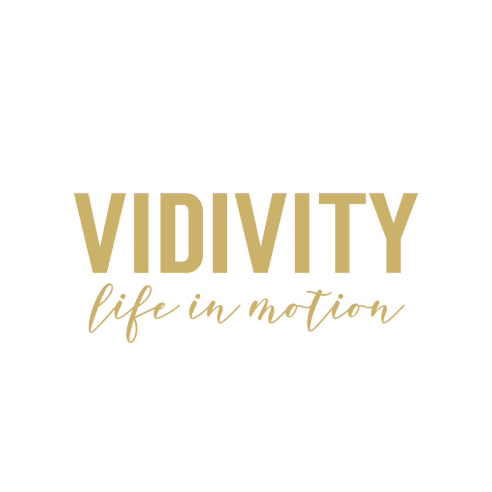 Vidivity