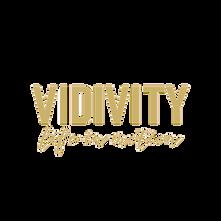 Vidivity_edited.png