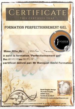 Certificat Perfectionnement gel David