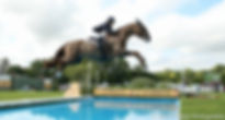 A Touch Imperious 2nd Hickstead Derby 2017. Premier Sports Horses