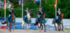 A TOUCH IMPERIOUS  WINNER NATIONS CUP DENMARK 2014. Premier Sports Horses