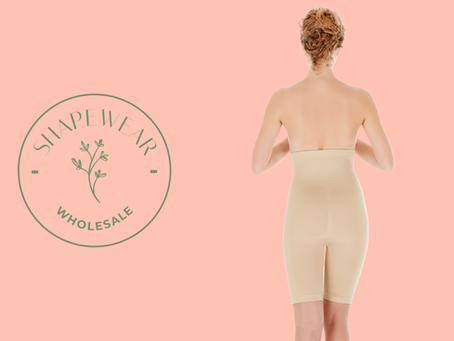 Seamless Womens Underwear in Bulk