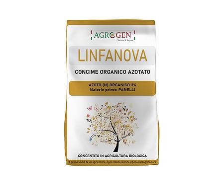 LINFANOVA new.jpg