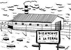 Bienvenue à la ferme