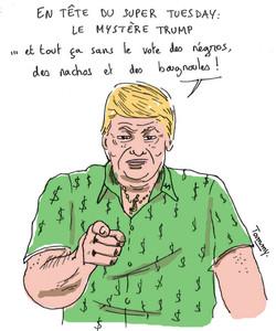 Le mystère Trump