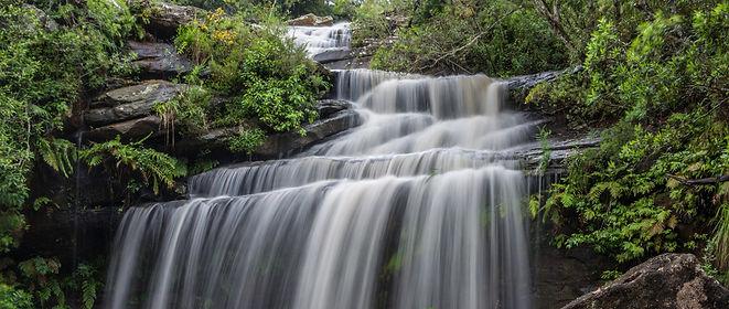 blocked-drain-plumber-oxford-falls